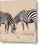 Merging Zebra Stripes Metal Print