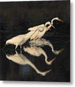 Merritt Island Egrets Metal Print