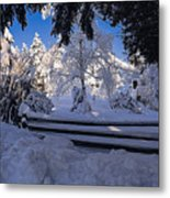 Merry Christmas And A Happy New Year Metal Print