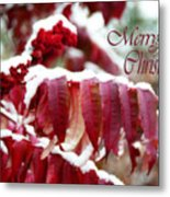Merry Christmas Red Leaves  Metal Print