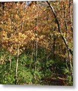 Merwin Autumn Trail Bend Metal Print