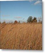 Merwin Prairie Autumn II Metal Print