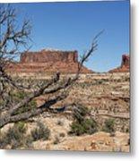 Mesas Near Moab Metal Print