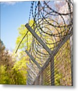 Metal Sharp Barbed Wire Metal Print