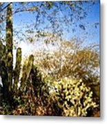 Mexican Country Road Metal Print