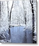Michgan Winter 10 Metal Print