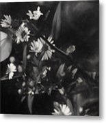 Mid-october Butterfly I Metal Print