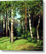 Midday Warmth In A Forest Impressionism Metal Print