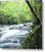Middle Fork River Metal Print