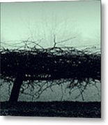 Middlethorpe Tree In Fog Gray And Green Panorama Metal Print