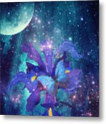 Midnight Butterfly Metal Print