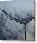 Midnight Drop  Metal Print