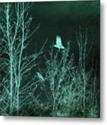 Midnight Flight Silhouette Teal Metal Print