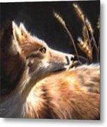 Midnight Fox Metal Print