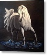 Midnight Prance Metal Print
