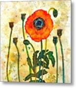 Midsummer Poppy Metal Print