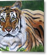 Mighty Bengal Metal Print