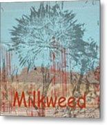Milkweed Collage Metal Print