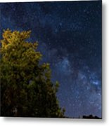 Milky Way Over The Forest At The Troodos Mountains In Cyprus. Metal Print