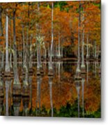 Mill Pond Reflections Metal Print