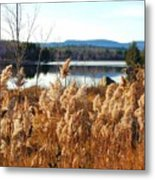 Millinocket Lake Metal Print