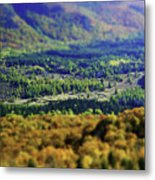 Mini Meadow Metal Print