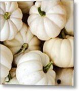 Mini White Pumpkins Metal Print
