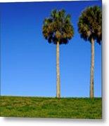 Minimal Palm Trees On A Hill In Saint Augustine Florida Metal Print