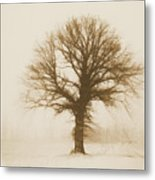 Minimal Winter Tree Metal Print
