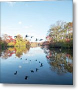 Mirrored Formation Metal Print