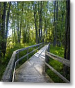 Mississippi Riverwalk Trail - Carleton Place, Ontario Metal Print