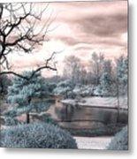 Missouri Botanical Garden Infrared Pond Blue Metal Print