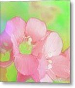 Missouri Wildflowers 5  - Polemonium Reptans -  Digital Paint 7 Metal Print