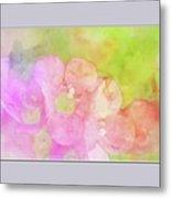 Missouri Wildflowers 5  - Polemonium Reptans -  Digital Paint 8 Metal Print