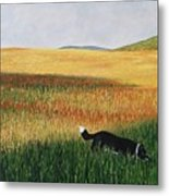 Missy In The Field Metal Print