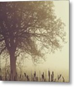 Mist Metal Print by Odd Jeppesen