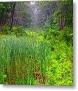 Mist On The Meadow  Metal Print