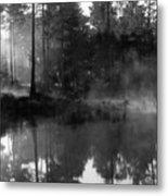 Mist On The Pond Metal Print