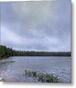 Mist Over Nicks Lake Metal Print