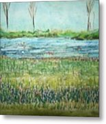 Mistery Pond In Orchard Park Ny Metal Print