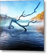 Mists Of The Morning Metal Print