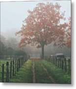 Misty Autumn Morning Metal Print