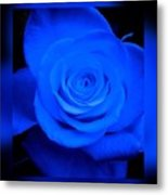 Misty Blue Rose Metal Print