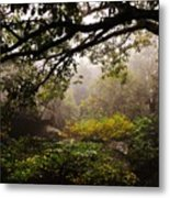 Misty Distance Metal Print