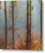 Misty Indian Morning Metal Print