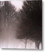 Misty Metal Print