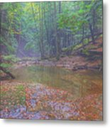 Misty Morning Woodscape Two Metal Print
