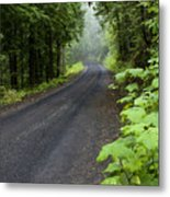Misty Mountain Road Metal Print
