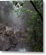 Misty Rainforest El Yunque Mirror Image Metal Print