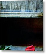 Misty Rose Metal Print
